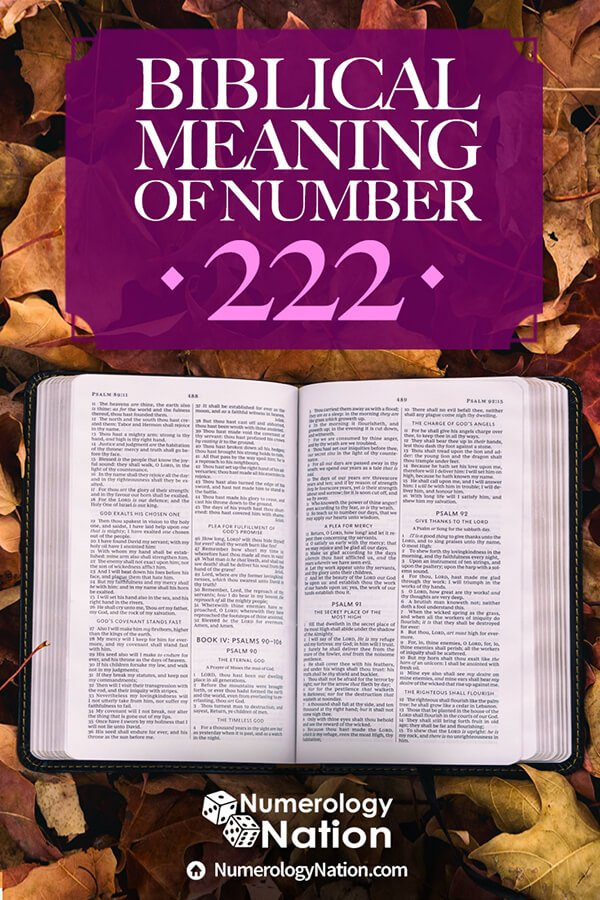 biblical meaning of number 222